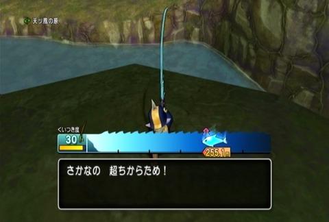 魚図鑑&パイク04
