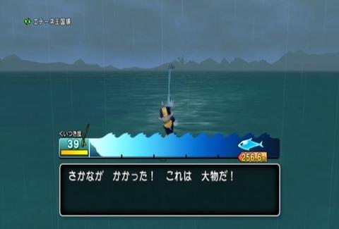 魚図鑑-オオシャコガイ02