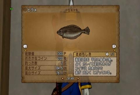 魚図鑑&ヒラメ05