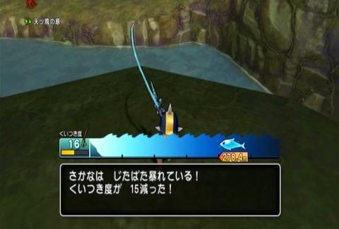 魚図鑑&パイク03