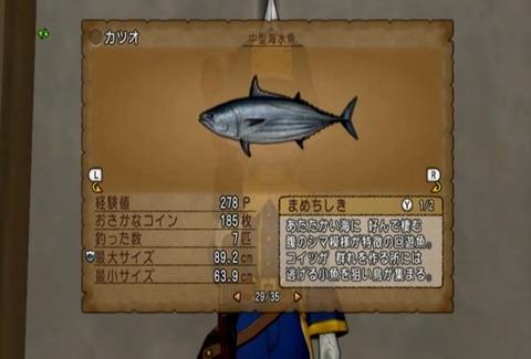 魚図鑑&カツオ05