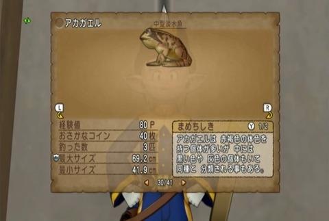 魚図鑑-アカガエル06