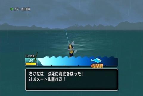 魚図鑑-オオシャコガイ04