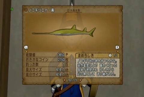 魚図鑑-ノコギリエイ黄10
