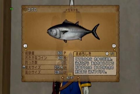 魚図鑑&マグロ05