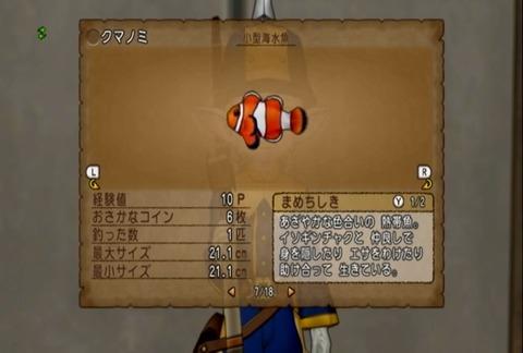 魚図鑑&クマノミ05