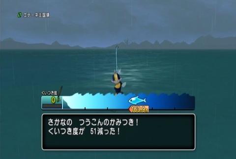 魚図鑑-オオシャコガイ06