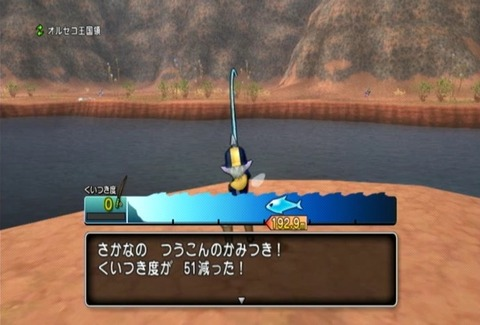魚図鑑-ムベンガ06