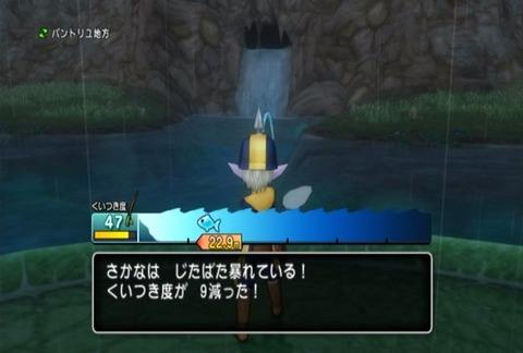 魚図鑑-アカガエル03