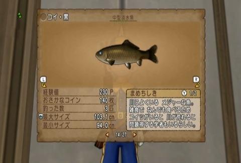 魚図鑑&コイ黒05