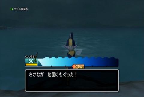 魚図鑑&ヒラメ03