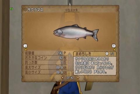 魚図鑑-サクラマス06
