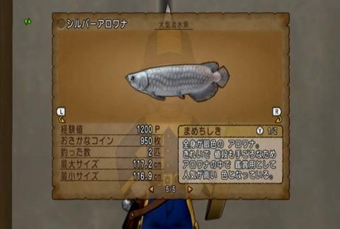 魚図鑑&シルバーアロワナ05