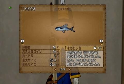 魚図鑑&トビウオ06
