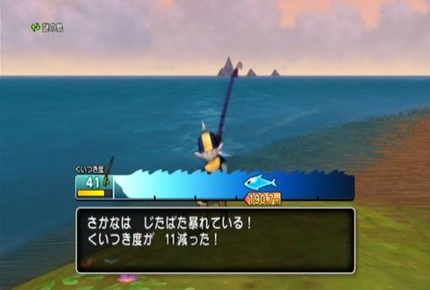 魚図鑑&ホシザメ04
