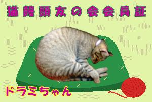 猫饅頭のドラミ