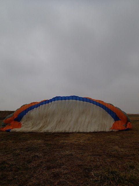 P3010015