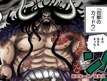 人造悪魔の実 四皇カイドウ ONE PIECE79巻