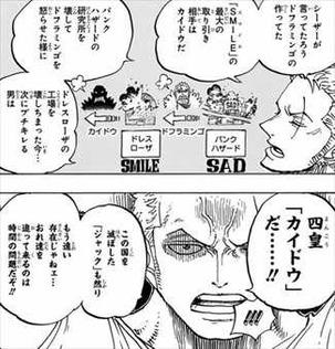 ワンピース81巻 ゾロ「四皇カイドウ」