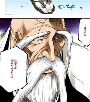 BLEACH39巻 山本元柳斎重國 アヨン戦 名言