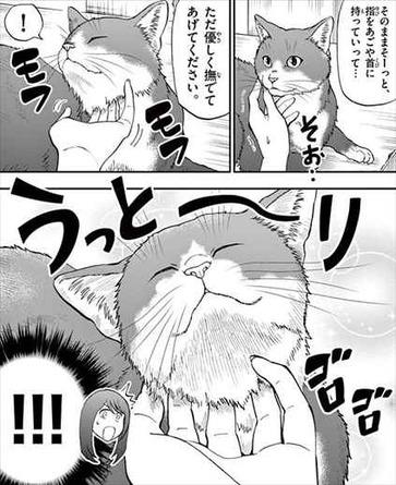 ねこったけ2巻 猫描写4