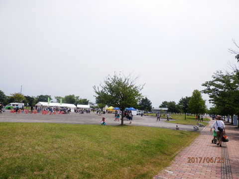 P6250846