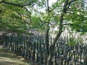 20091018真田山旧陸軍墓地