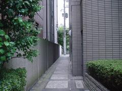 20090728朱雀門への道
