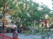 20101201堺開口神社