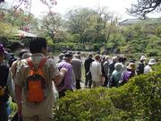 20110417わがまち会議探訪ウォーク慶沢苑