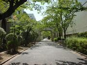 聖母女学院2
