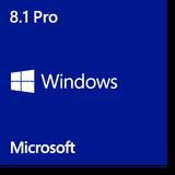 1 Pro