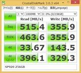 SP920_256GB_CDM