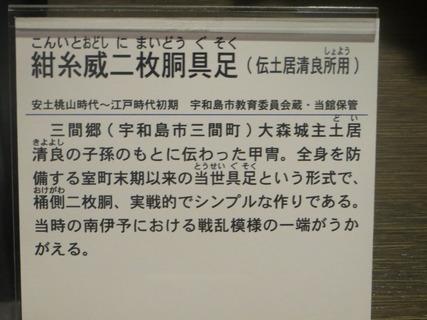 IMG_5547-1