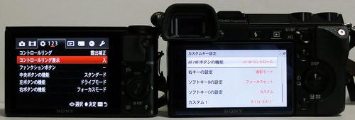 DSC-RX100vsNEX7_07