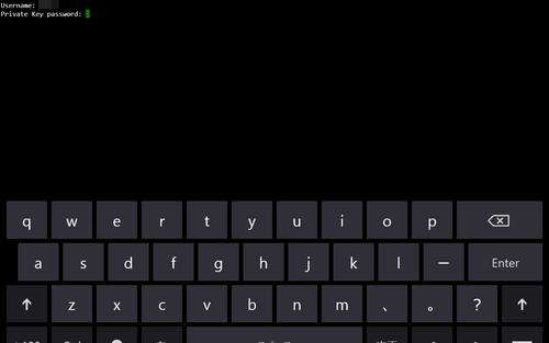Win8App_RemoteTerminal07