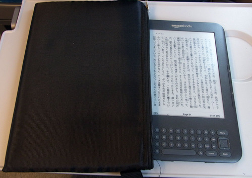 Kindle2Blog20101116C