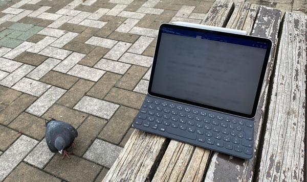 iPadPro2018at2020spring3