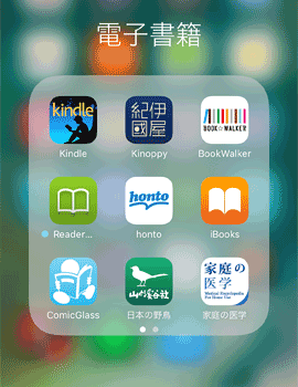 Kindle20161229B