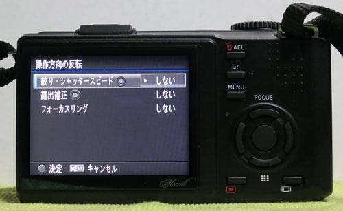 DP1M_11