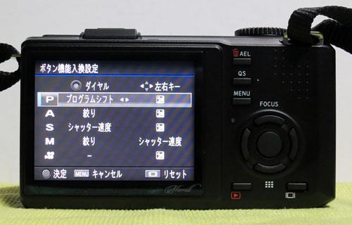 DP1M_10