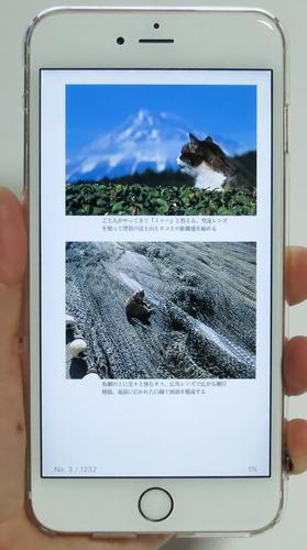 iPhone6sPlus21