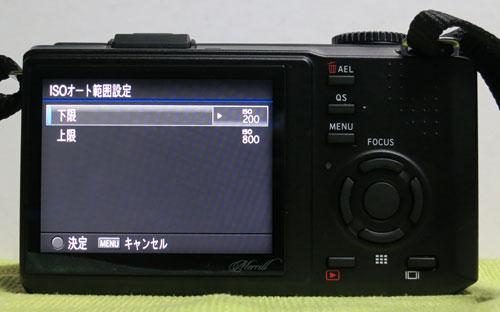 DP1M_12