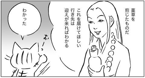 白いキツネ1-3