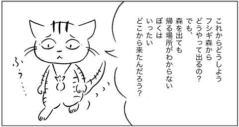 ねこ森3-1
