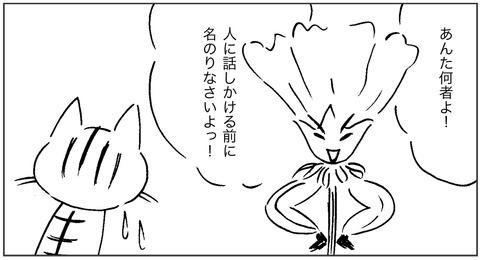 ねこ森3-4
