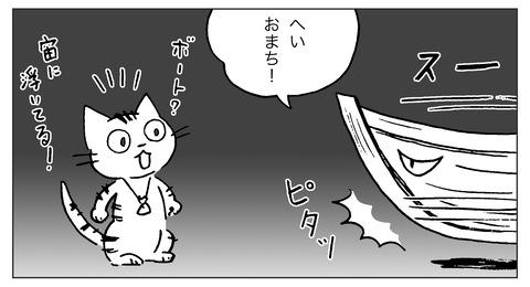 白ギツネ11-2