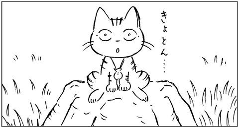 ねこ森4-5
