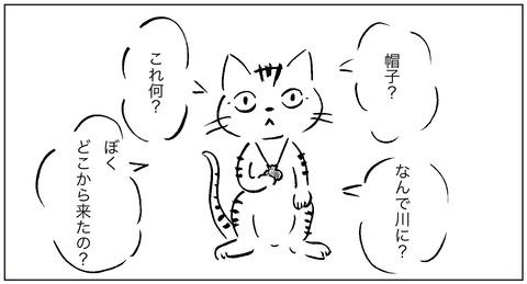 ねこ森1−1