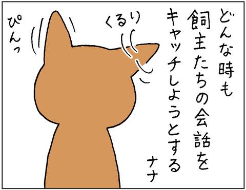 2016-0079